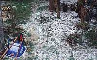 Image of hail covering the ground like snow